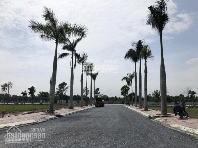 Trong tháng 4/2019, quận 9, Bình Chánh, Thủ Đức, Củ Chi và quận 12 (TP.HCM) là những địa bàn được quan tâm nhiều nhất về đất nền, thổ cư.